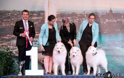 Genève Dogshows 2018 – Suisse