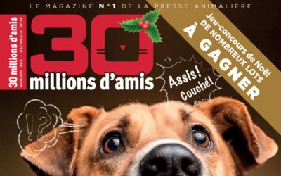 Interview 30 Millions d'Amis